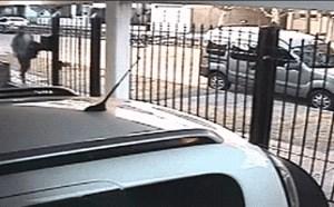 搞笑动态图片笑死人:女生面对抢劫的劫匪怎么办