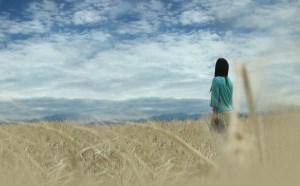 情感日志:云烟水榭,只为初心