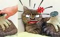 全自动的假手撸猫神器 这样的按摩毫无灵魂 4